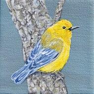 yellow-bird-smooth